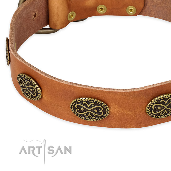 Walking full grain genuine leather collar with rust-proof buckle and D-ring