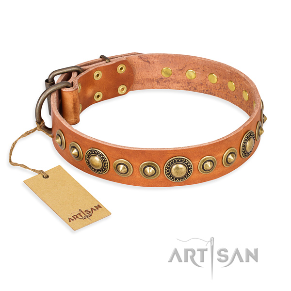 Sturdy leather dog collar with corrosion-resistant fittings