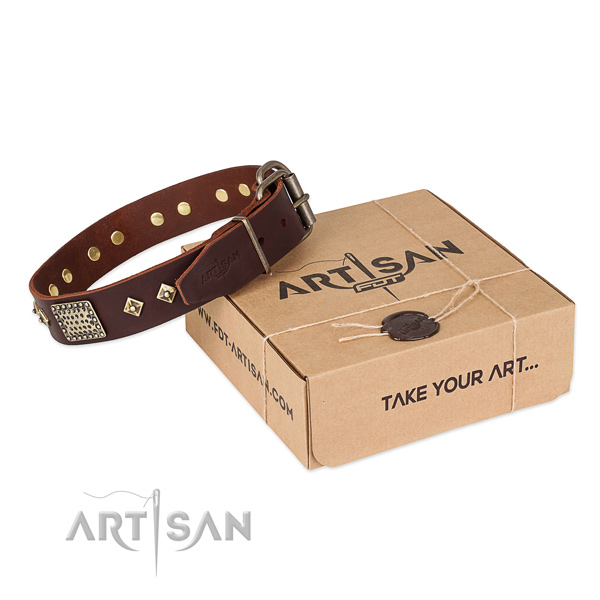 Fine quality full grain genuine leather dog collar for daily use