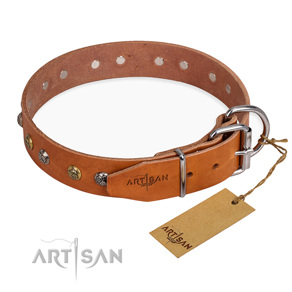 Awesome design decorations on leather dog collar