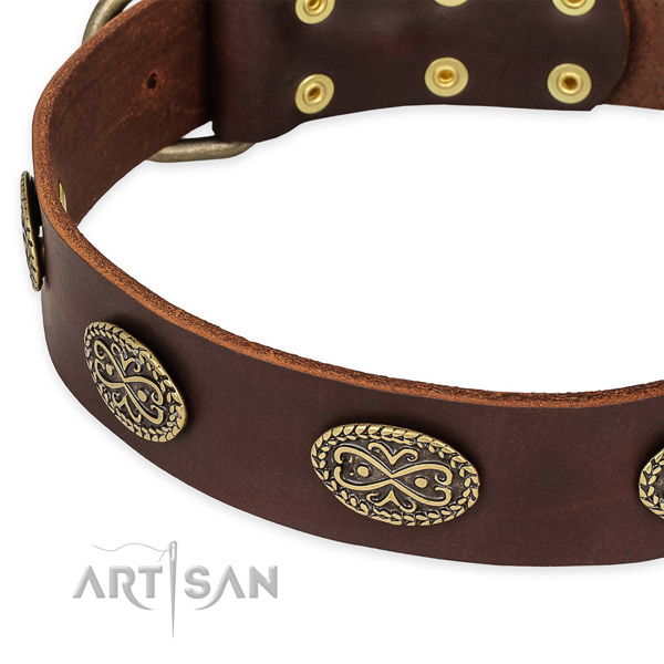 Snugly fitted leather dog collar with extra strong durable fittings