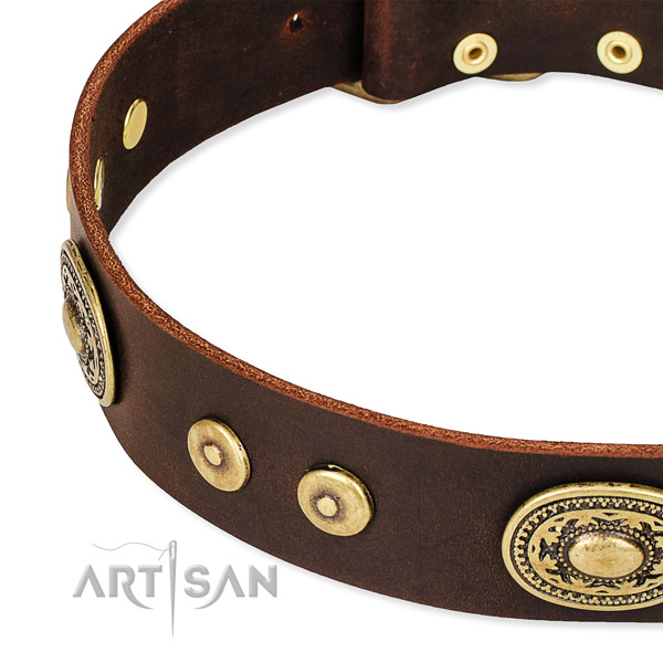 Easy to put on/off leather dog collar with extra strong durable fittings