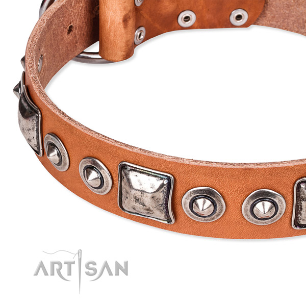 Snugly fitted leather dog collar with resistant durable hardware