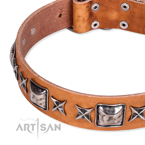 Quick to fasten leather dog collar with extra sturdy brass plated buckle