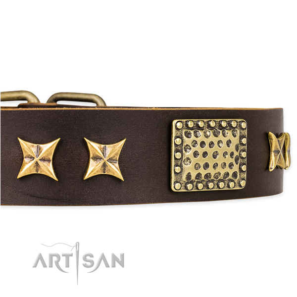 Snugly fitted leather dog collar with resistant to tear and wear brass plated set of hardware