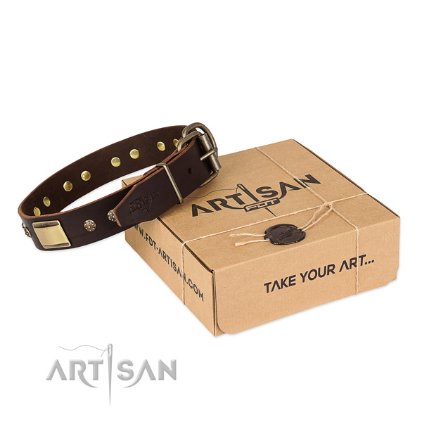 High quality leather dog collar for daily use
