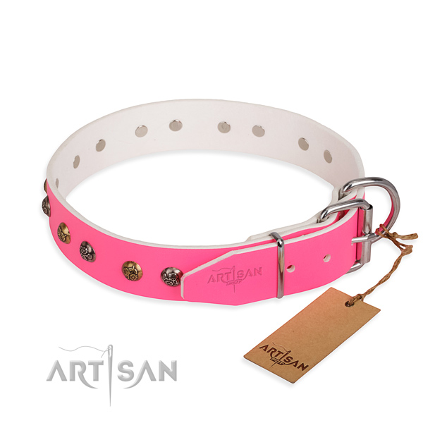 Daily leather collar for your beloved dog