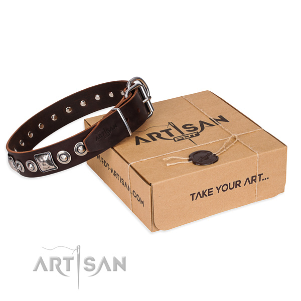 Trendy genuine leather dog collar for everyday use