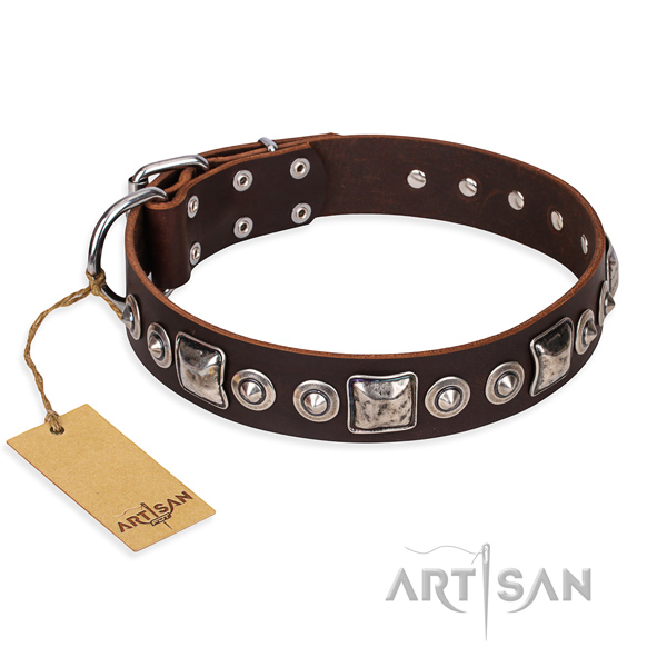 Resistant leather dog collar with sturdy details