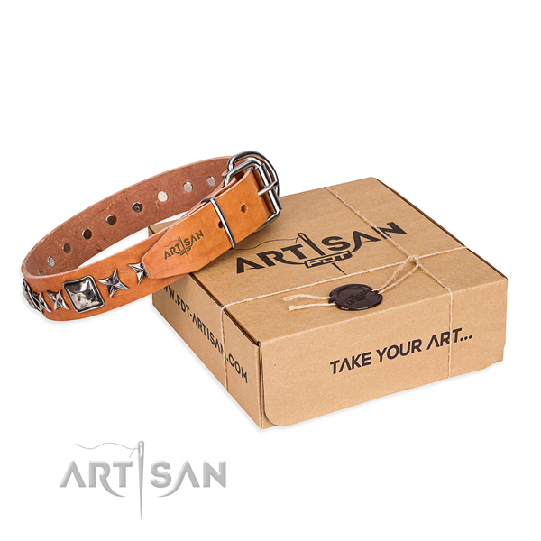 Fashionable full grain genuine leather dog collar for everyday use