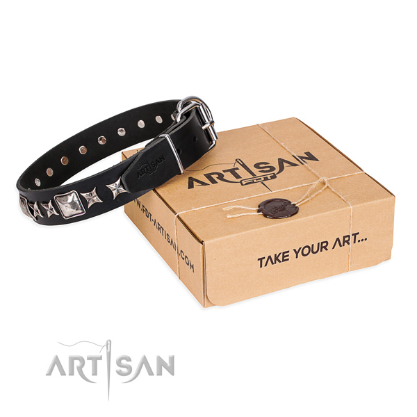 Stylish leather dog collar for everyday use