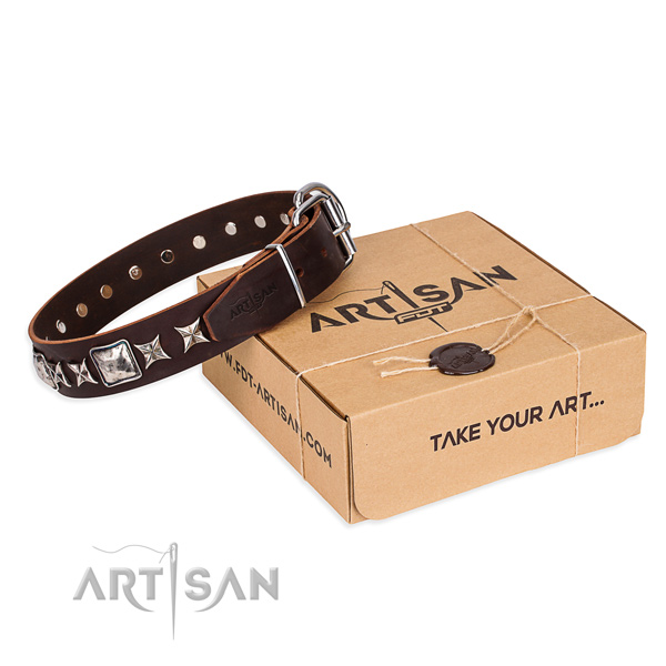 Designer leather dog collar for everyday walking