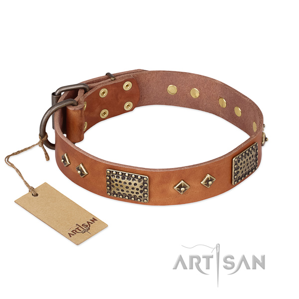 Unique design embellishments on full grain natural leather dog collar