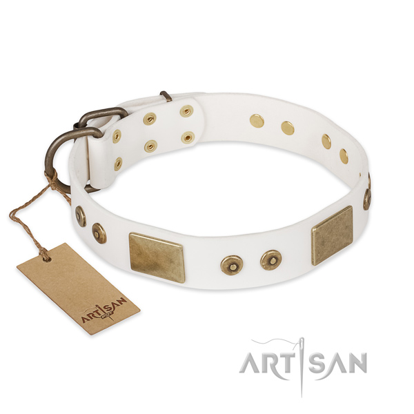 Stunning design adornments on full grain natural leather dog collar