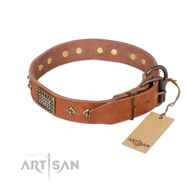 Everyday walking full grain natural leather collar with embellishments for your dog