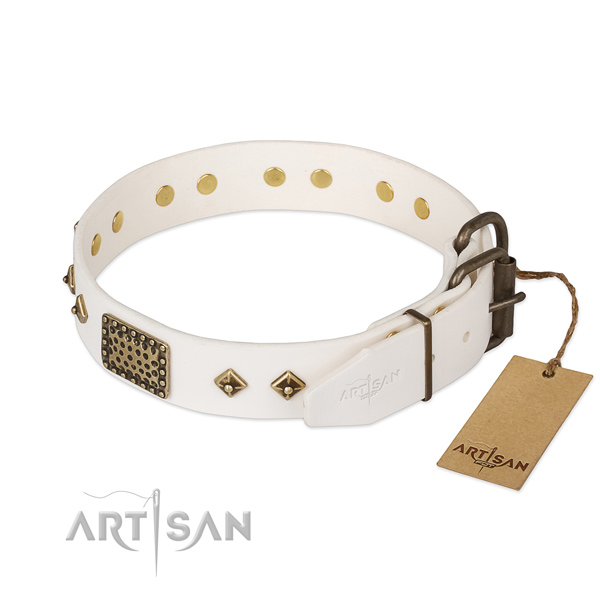 Walking full grain genuine leather collar with decorations for your pet