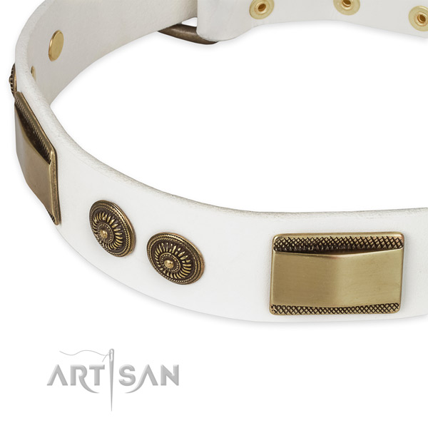 Stylish walking full grain leather collar with rust resistant buckle and D-ring