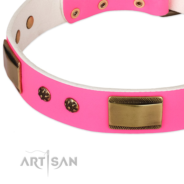 Walking full grain leather collar with corrosion proof buckle and D-ring
