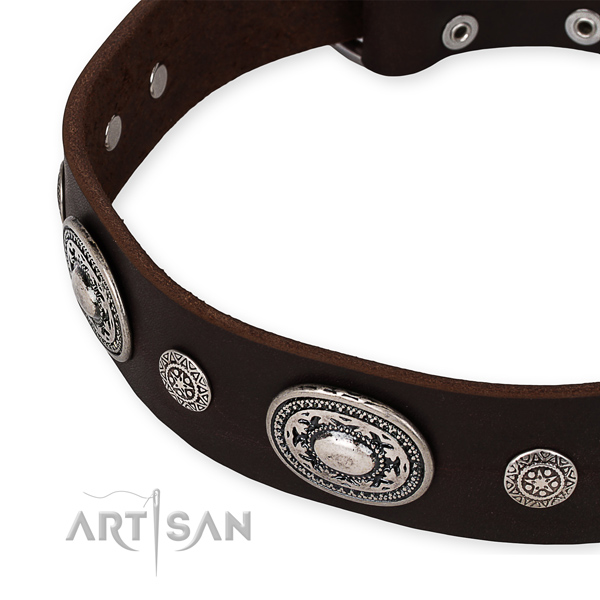 Snugly fitted leather dog collar with almost unbreakable rust-proof hardware