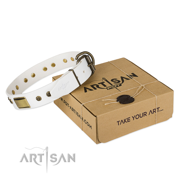 Impressive full grain natural leather dog collar for everyday use