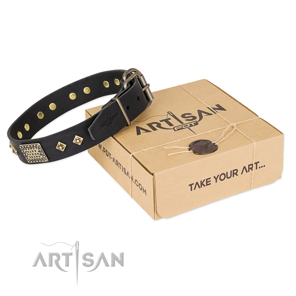 Awesome full grain natural leather dog collar for stylish walking