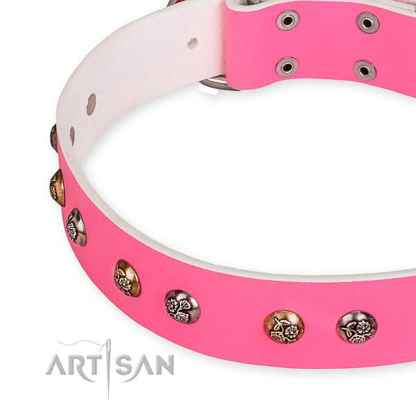 Snugly fitted leather dog collar with extra sturdy chrome plated buckle