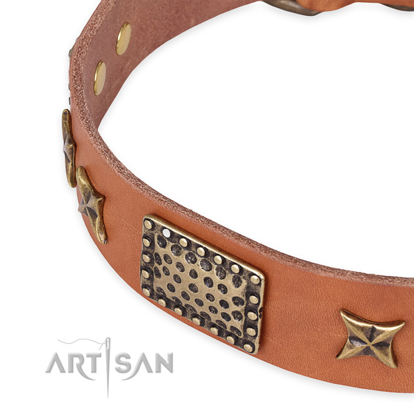 Snugly fitted leather dog collar with extra sturdy durable hardware