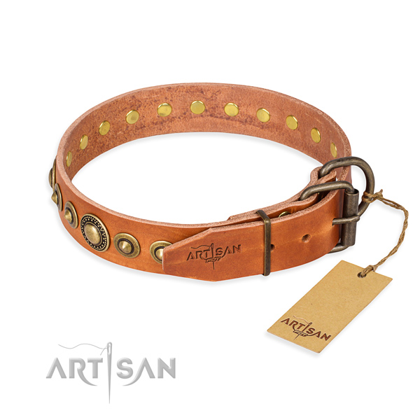 Everyday leather collar for your darling four-legged friend
