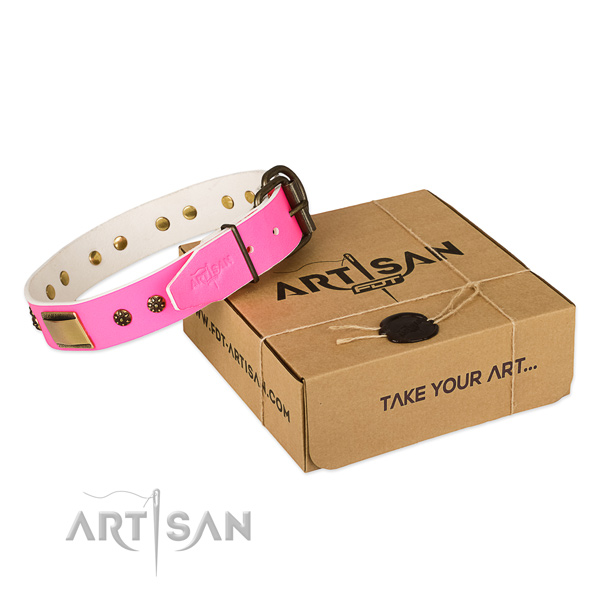 Best quality leather dog collar for daily use