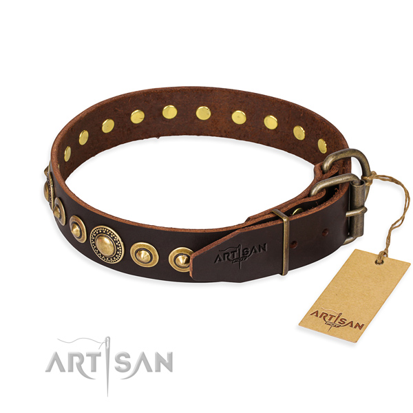 Daily leather collar for your stunning four-legged friend