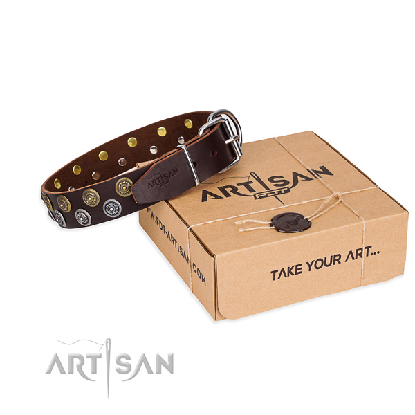 Casual style leather dog collar with exceptional embellishments