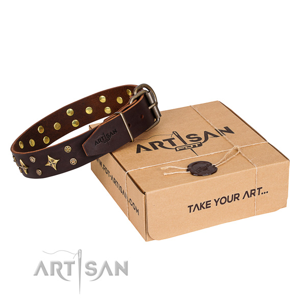 Stylish design full grain leather dog collar for walking in style