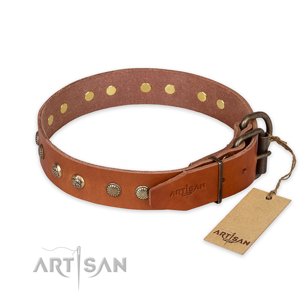 Stylish walking full grain natural leather collar with studs for your four-legged friend