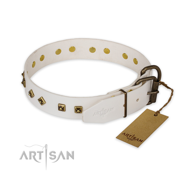 Daily walking full grain genuine leather collar with embellishments for your canine