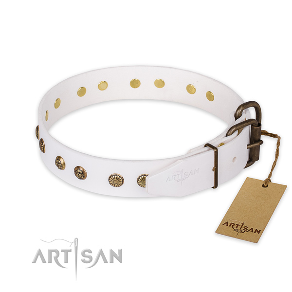 Walking genuine leather collar with embellishments for your four-legged friend