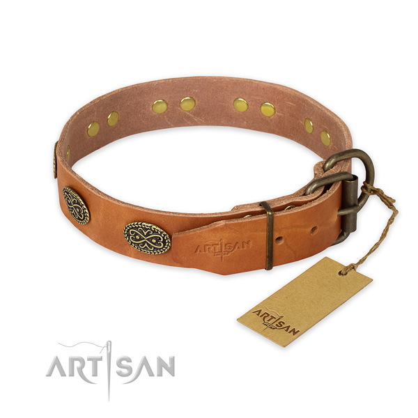 Walking full grain natural leather collar with adornments for your pet