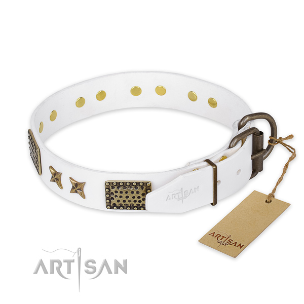Daily walking leather collar with embellishments for your dog