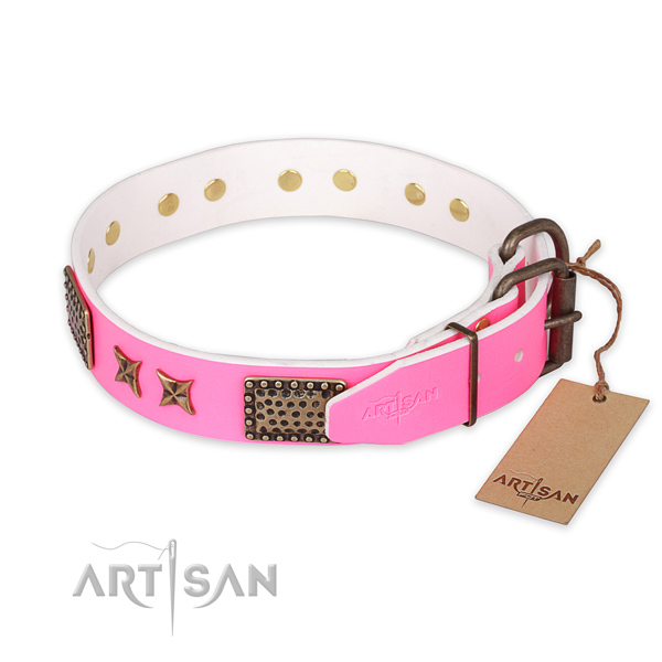 Stylish walking full grain natural leather collar with adornments for your doggie