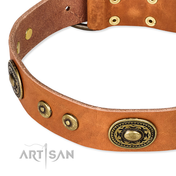Adjustable leather dog collar with resistant brass plated fittings