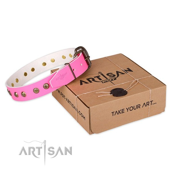Trendy natural genuine leather dog collar for stylish walks