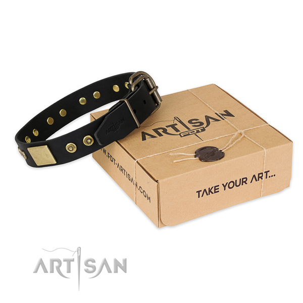 Top notch full grain natural leather dog collar for everyday walking