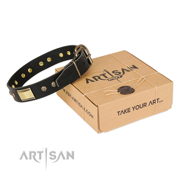 Awesome full grain natural leather dog collar for stylish walks