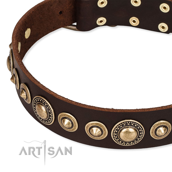Easy to use leather dog collar with almost unbreakable non-rusting buckle and D-ring