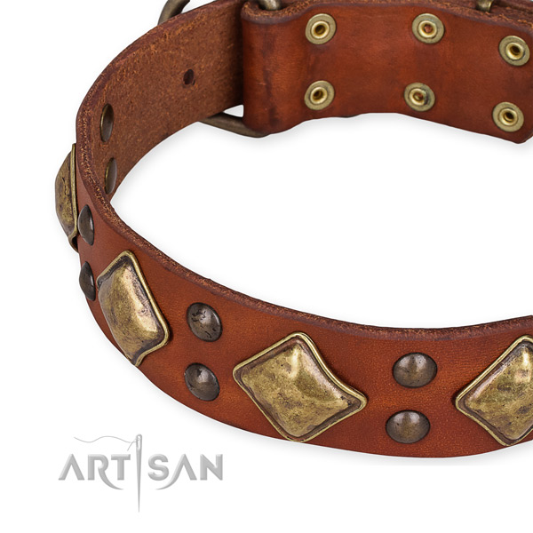 Easy to put on/off leather dog collar with resistant to tear and wear durable fittings