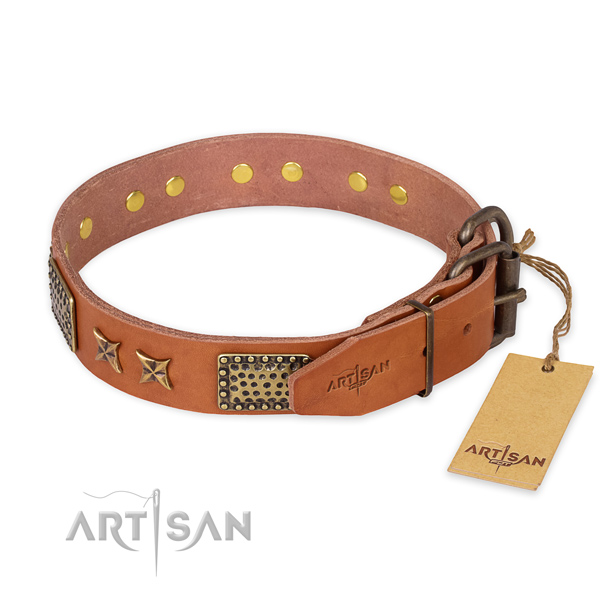 Daily walking genuine leather collar with embellishments for your dog