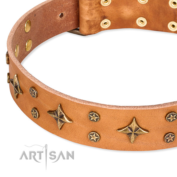 Quick to fasten leather dog collar with resistant to tear and wear rust-proof set of hardware