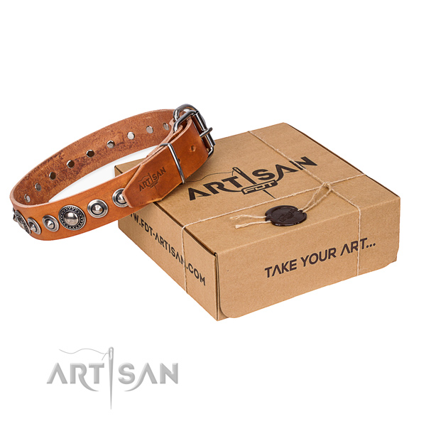 Top quality full grain leather dog collar for walking in style