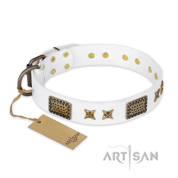 Exquisite design adornments on leather dog collar