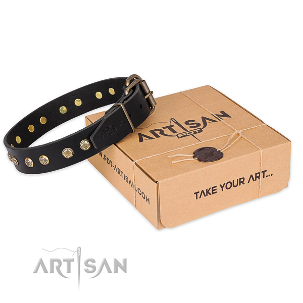 Stylish design natural genuine leather dog collar for walking in style