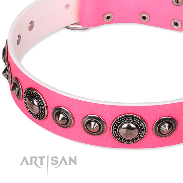 Quick to fasten leather dog collar with resistant to tear and wear durable set of hardware